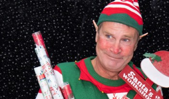 magical christmas elf